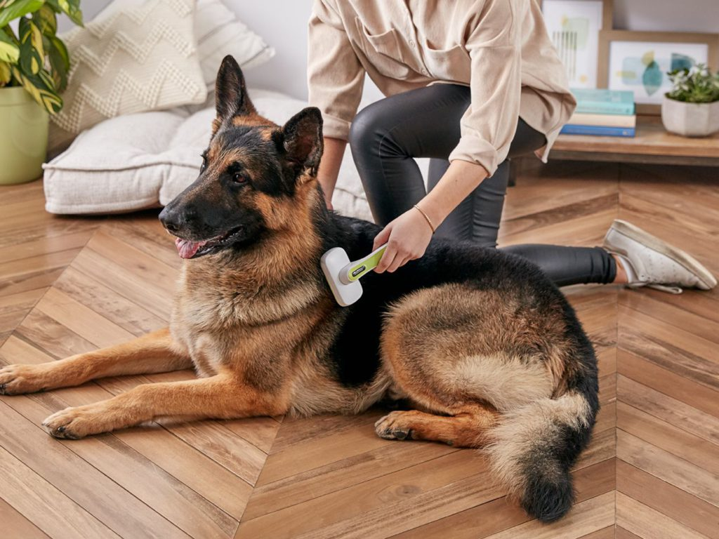 The most important tool for combatting dog shedding is the proper brush.
